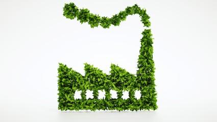 Plafond d'émission de carbone et marché du carbone (anglais)